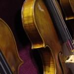 Violin 09